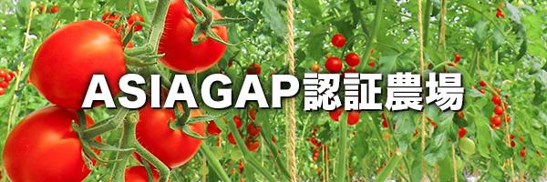 いわき小名浜菜園はASIAGAP認証を取得しています。